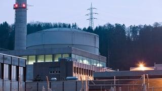 Neue Risse am Kernmantel des AKW Mühleberg entdeckt