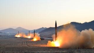 UNO-Sicherheitsrat verurteilt Nordkorea