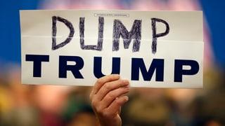 Trump bodigen: Die Rezepte der Republikaner
