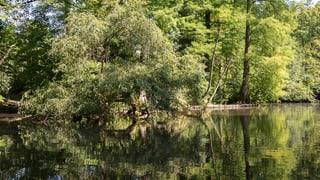 Ein Ranger soll im Naturpark für Ordnung sorgen