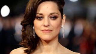 Angebliche Brad-Pitt-Affäre Marion Cotillard ist schwanger