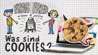 Video «Frag Fred: Was sind Cookies? (3/6)» abspielen