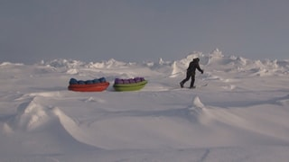 Ein Schlitten für den Nordpol