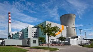 Organisaziuns vulan examinaziuns dals donns da l'AKW Leibstadt