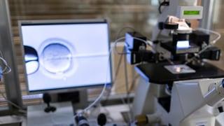 Il pievel svizzer decida sur da la medischina da reproducziun