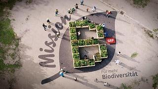 «Mission B» für mehr Biodiversität