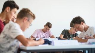 Lenzburg möchte eine Kantonsschule