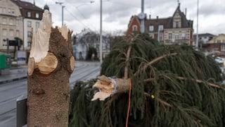 Umgestürzte Bäume, unterbrochene Bahn- und Tramlinien
