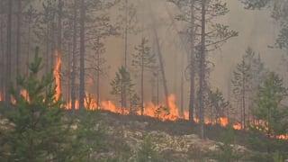 Schweden muss sich auf heissere und härtere Zeiten einstellen