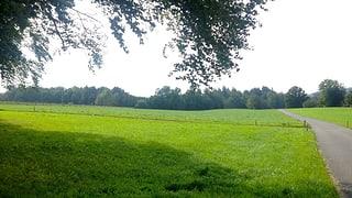 BLS möchte auf der grünen Wiese bauen