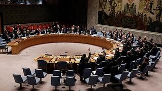 UNO-Sicherheitsrat unterstützt Waffenruhe