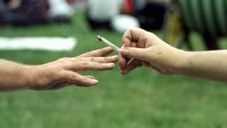 Bundesrat will mit Cannabis-Versuchen nun vorwärts machen