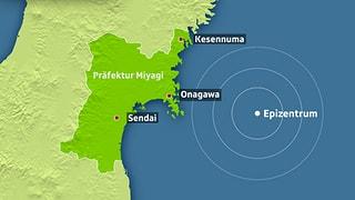 Eindrücke der Dreifach-Katastrophe in Japan 2011