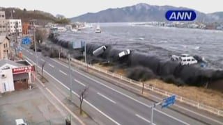 Video «Fukushima-Katastrophe, Tsunami-Jäger, Schmetterlingssammler» abspielen