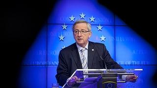 «Die EU muss schlanker werden»