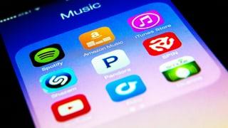 Mieten statt kaufen: Streaming spaltet die Musikbranche