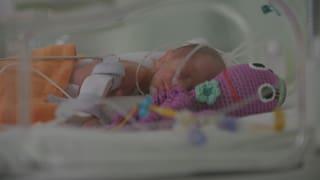 Video «Wunschkind - Wie Technik neues Leben schafft!» abspielen