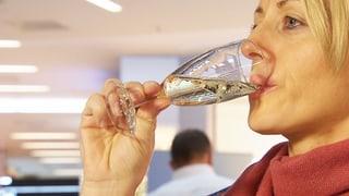 Schaumwein und Champagner im Test: Schweizer schäumt obenauf