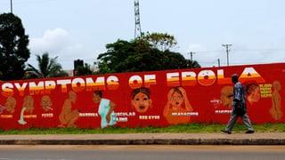 Bundesrat prüft Armeeeinsatz im Ebola-Gebiet