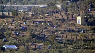 Die einen bauen Zäune, die anderen verschärfen die Asylgesetze