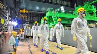Fukushima zum Trotz: Japan reaktiviert Atomkraftwerke