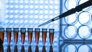 Schwarze Liste: HIV-Positive müssen um Medikamente bangen