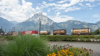 Viafier transportescha dapli rauba tras las Alps