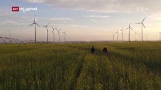 Wege zur Energie-Autonomie (Artikel enthält Video)