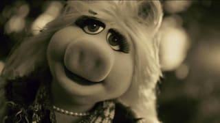 Aber «Hello»: Adele als Schwein