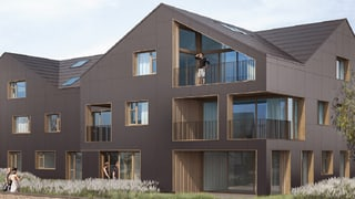 Schweizer Pilotprojekt: Das Haus der Zukunft?