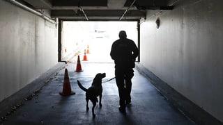 Immer mehr Gemeinden setzen auf private Sicherheitsdienste