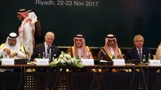 Die zersplitterte syrische Opposition will mit einer gemeinsamen Delegation an den Syrien-Friedensgesprächen in Genf teilnehmen.