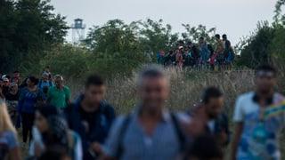 Ungarn schickt 2000 Polizisten an die serbische Grenze
