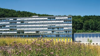Regionaljournal Aargau Solothurn