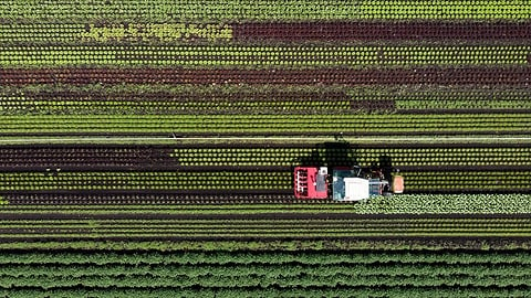 Landwirtschaft und Artenvielfalt - ein Widerspruch?