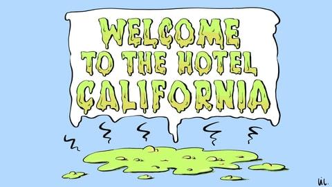 Und aus der Kotze klingt «Hotel California»