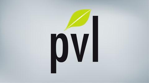PVL Grischuna cunter iniziativa da linguas estras