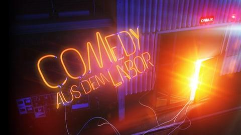 Silvesterfeuerwerk mit «Comedy aus dem Labor» 2018