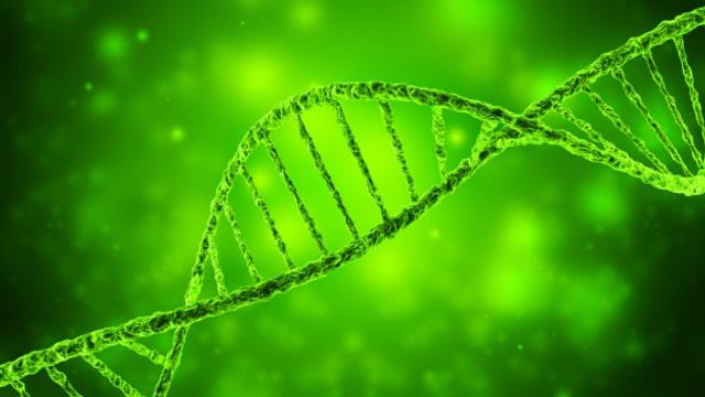 Wo kommen meine Vorfahren her? Das Genom gibt Aufschluss. Aber nicht vollumfänglich.