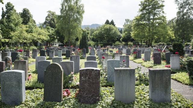 Grabsteine im Friedhof Sihlfeld Zürich.