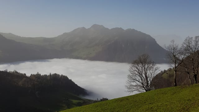 Der Herbst, der Monat November und der Nebel sind das grosse Thema der Songs von Swissmade