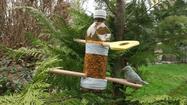 Einfach und schnell- der Vogelfutterspender aus der Petflasche