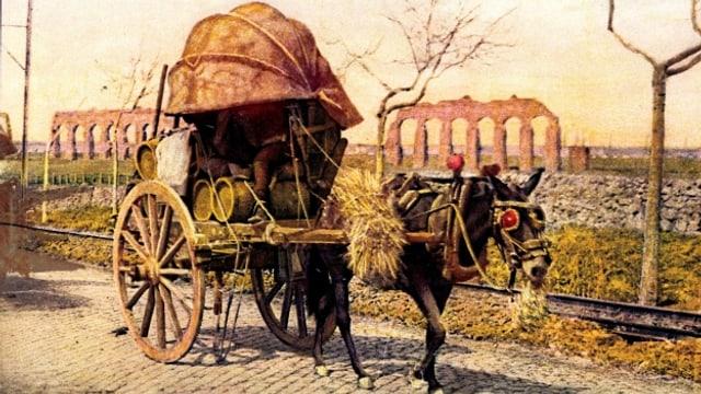Der Esel half bei der wirtschaftlichen Erschliessung schwer erreichbarer Regionen.