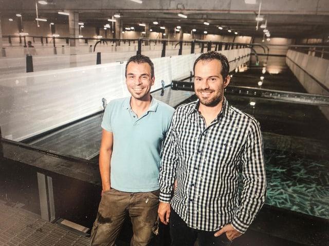 Rafael Waber und Michael Siragusa haben die Firma SwissShrimp gegründet.
