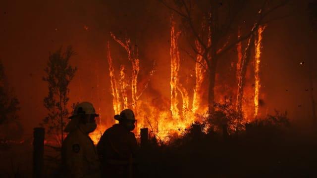 Waldbrände wie in Australien werden durch die globale Erwärmung begünstigt