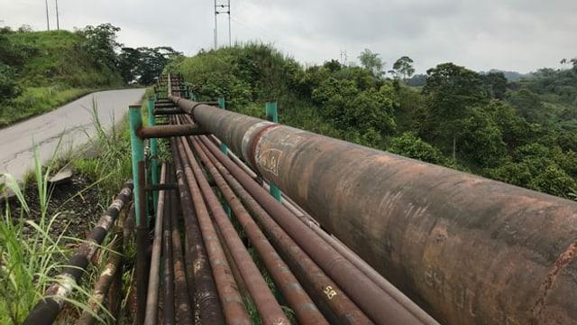 Der ursprüngliche Dschungel ist längst abgeholzt. Wo früher undurchdringlicher Dschungel war, säumen rostige Pipelines eine Strasse.
