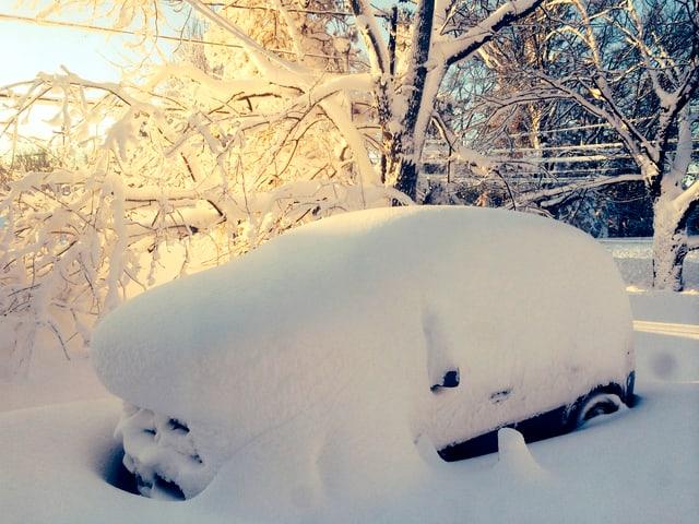 Vollständig vom Schnee bedecktes Auto. Sonnenlicht durch schneebedecke Äste scheinend