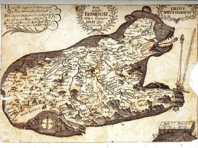 Karte in Bärenform