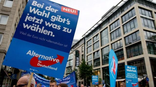 Unterstützer der AfD mit Plakaten in einer Stadt