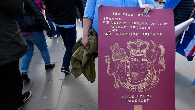 Frau hält Plakat, der aussieht wie ein bordeauxroter Pass. Darauf steht: Hands off my Passport.